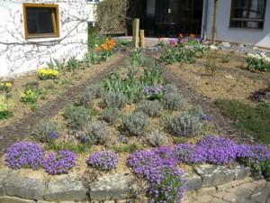 Gartenbild einen Monat später